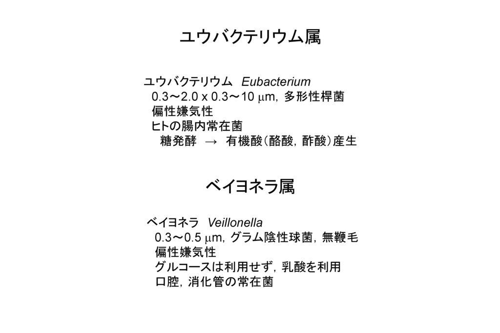 ユウバクテリウム属 ベイヨネラ属 ユウバクテリウム Eubacterium 0.3~2.0 x 0.3~10 mm,多形性桿菌 偏性嫌気性