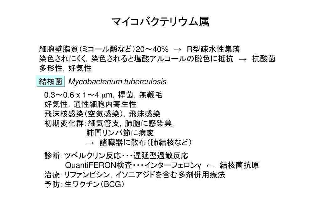 マイコバクテリウム属 細胞壁脂質(ミコール酸など)20~40% → R型疎水性集落