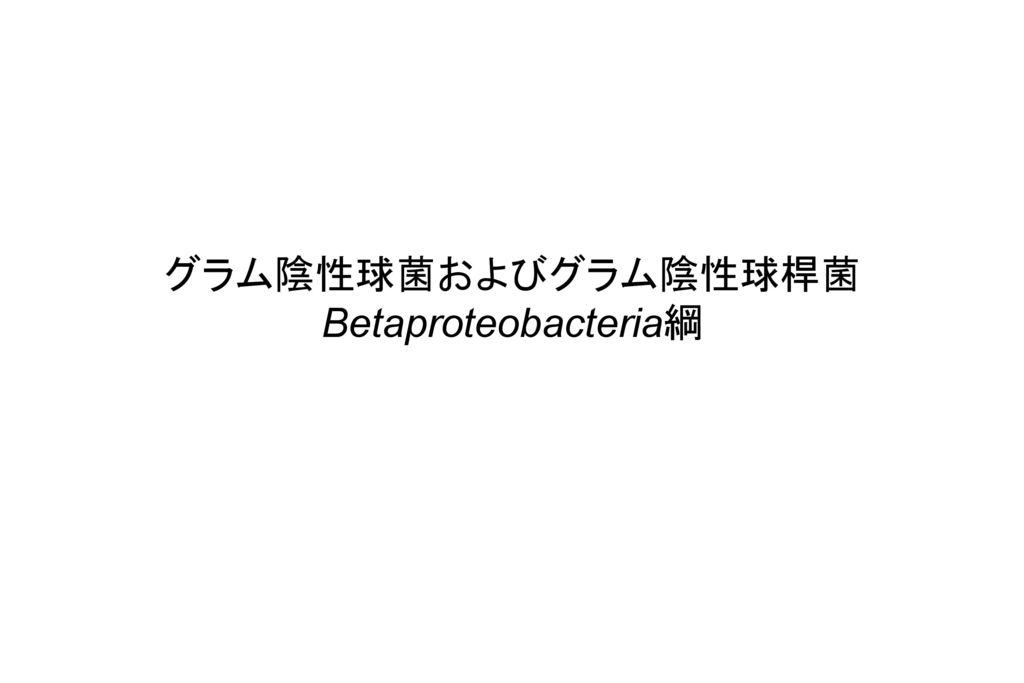 グラム陰性球菌およびグラム陰性球桿菌 Betaproteobacteria綱