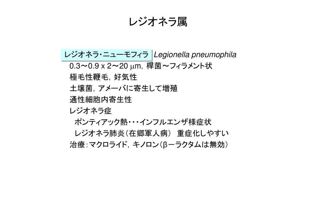 レジオネラ属 レジオネラ・ニューモフィラ Legionella pneumophila