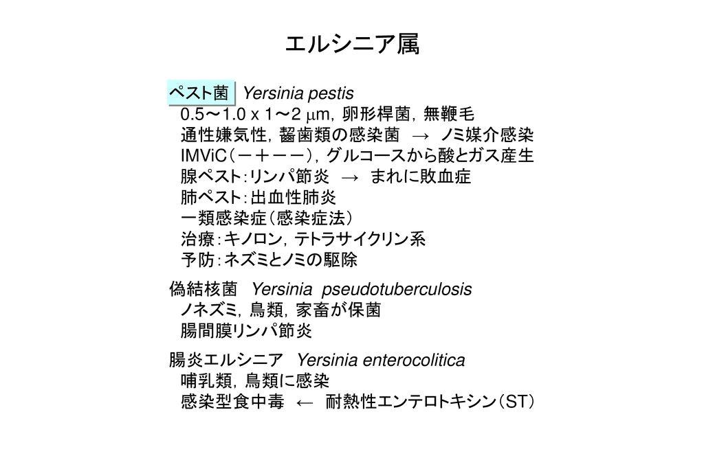 エルシニア属 ペスト菌 Yersinia pestis 0.5~1.0 x 1~2 mm,卵形桿菌,無鞭毛
