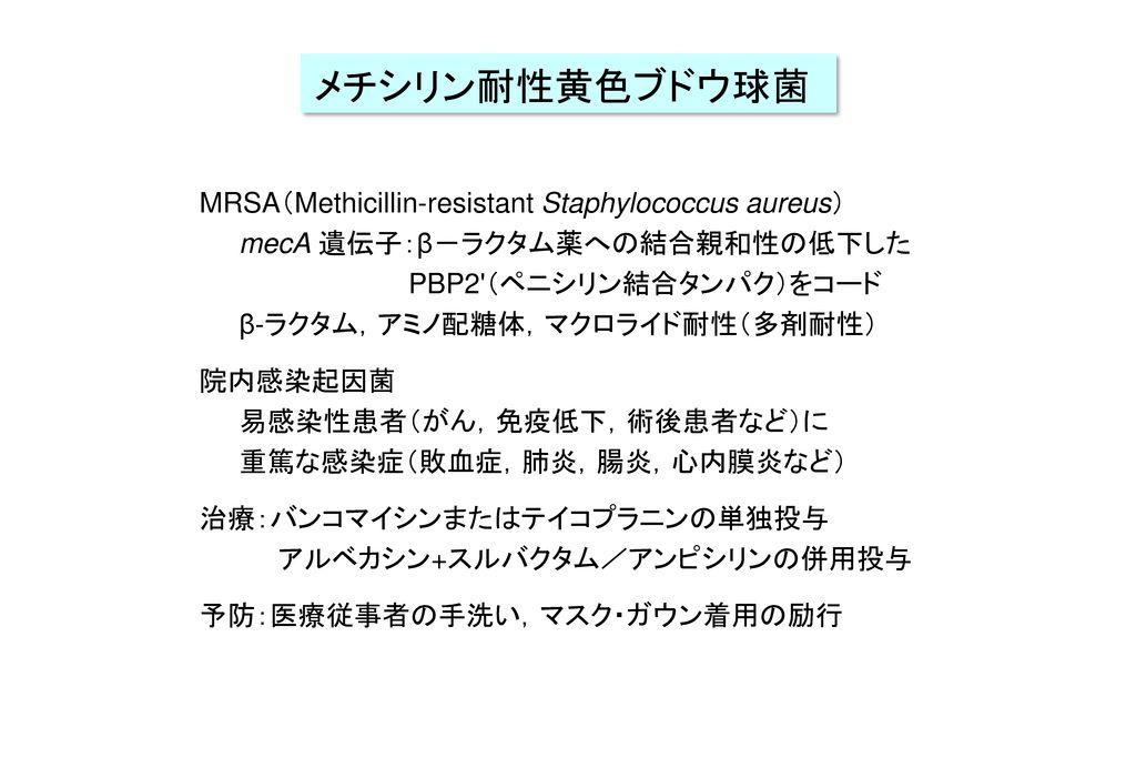 メチシリン耐性黄色ブドウ球菌 MRSA(Methicillin-resistant Staphylococcus aureus)