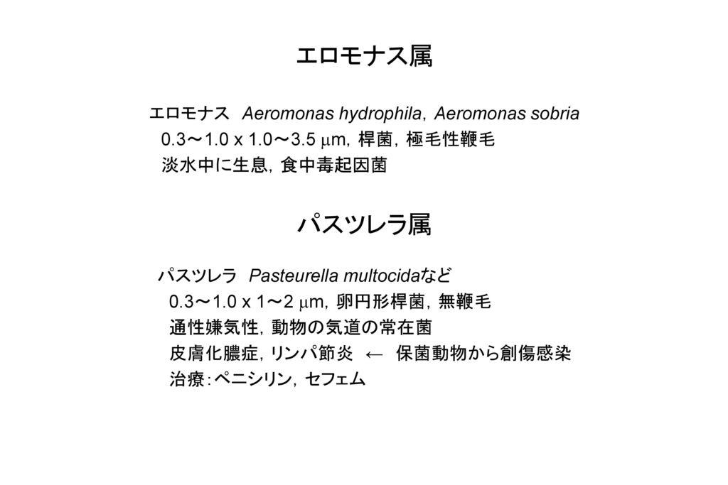 エロモナス属 パスツレラ属 エロモナス Aeromonas hydrophila,Aeromonas sobria
