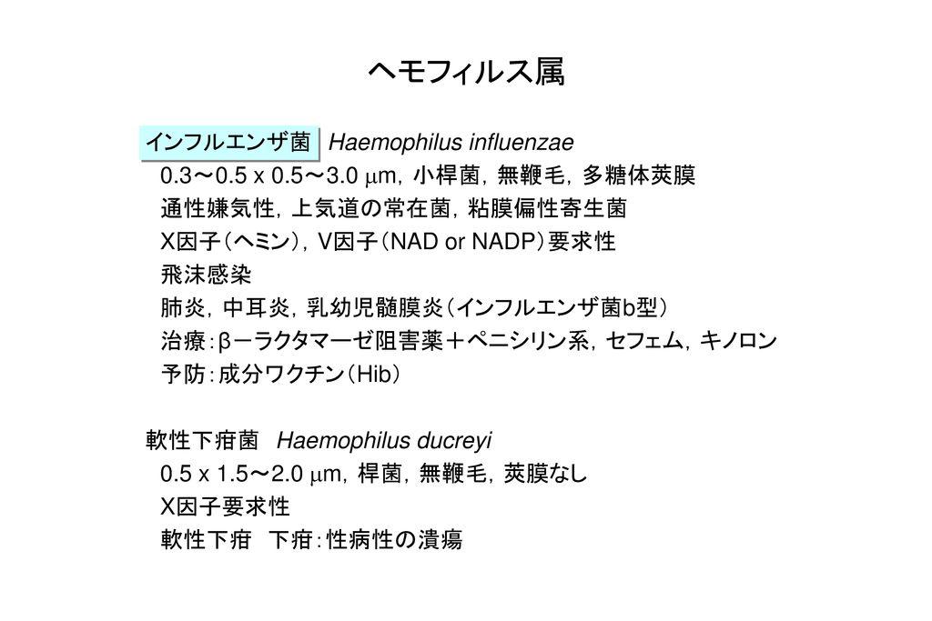 ヘモフィルス属 インフルエンザ菌 Haemophilus influenzae