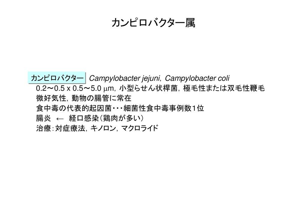 カンピロバクター属 カンピロバクター Campylobacter jejuni,Campylobacter coli