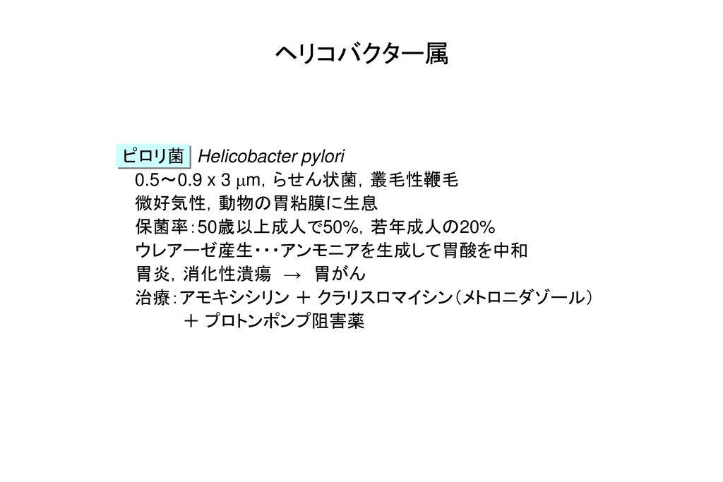 ヘリコバクター属 ピロリ菌 Helicobacter pylori 0.5~0.9 x 3 mm,らせん状菌,叢毛性鞭毛