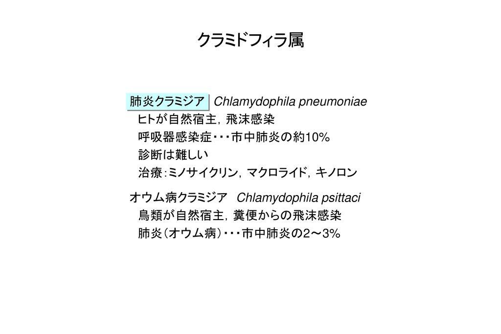 クラミドフィラ属 肺炎クラミジア Chlamydophila pneumoniae ヒトが自然宿主,飛沫感染