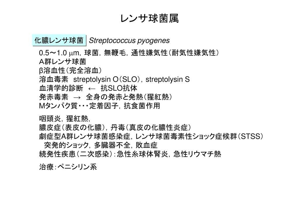 レンサ球菌属 化膿レンサ球菌 Streptococcus pyogenes 0.5~1.0 mm,球菌,無鞭毛,通性嫌気性(耐気性嫌気性)