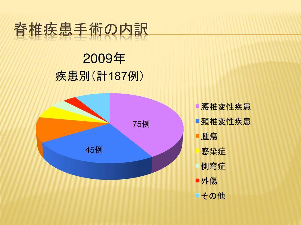 脊椎疾患手術の内訳 2009年 75例 45例