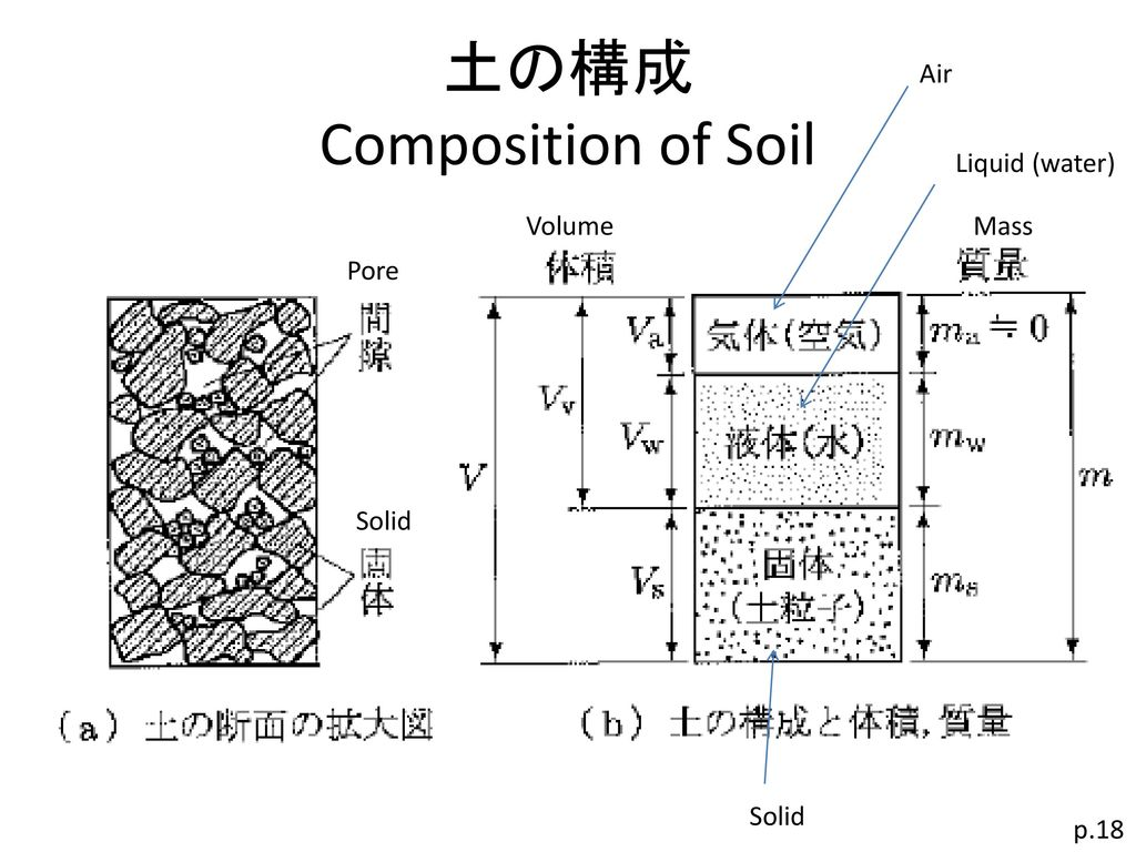 土の構成 Composition of Soil