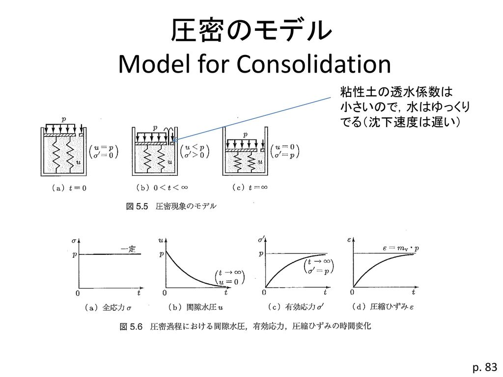 圧密のモデル Model for Consolidation