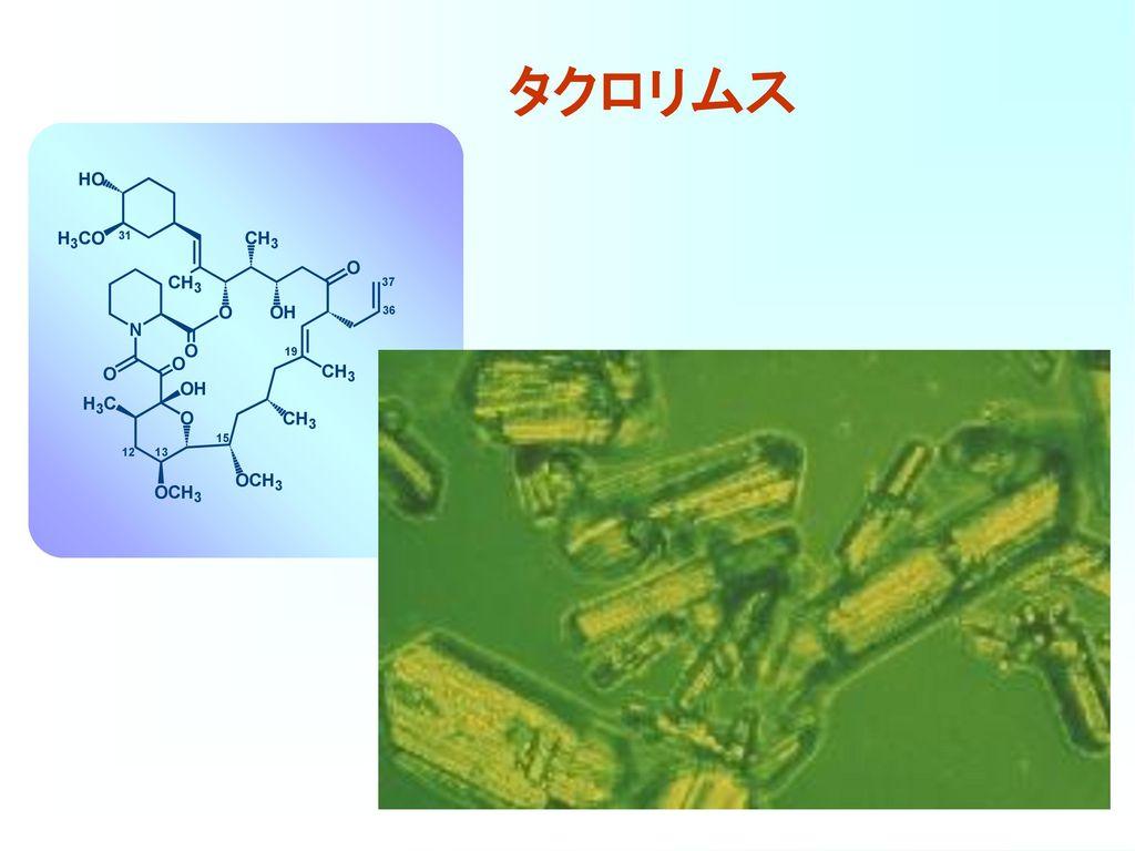 FK506とシクロスポリンのin vitroにおける免疫抑制効果