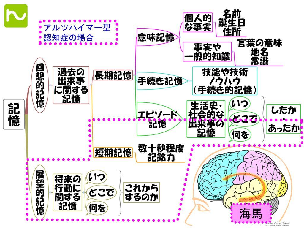 アルツハイマー型 認知症の場合 海馬