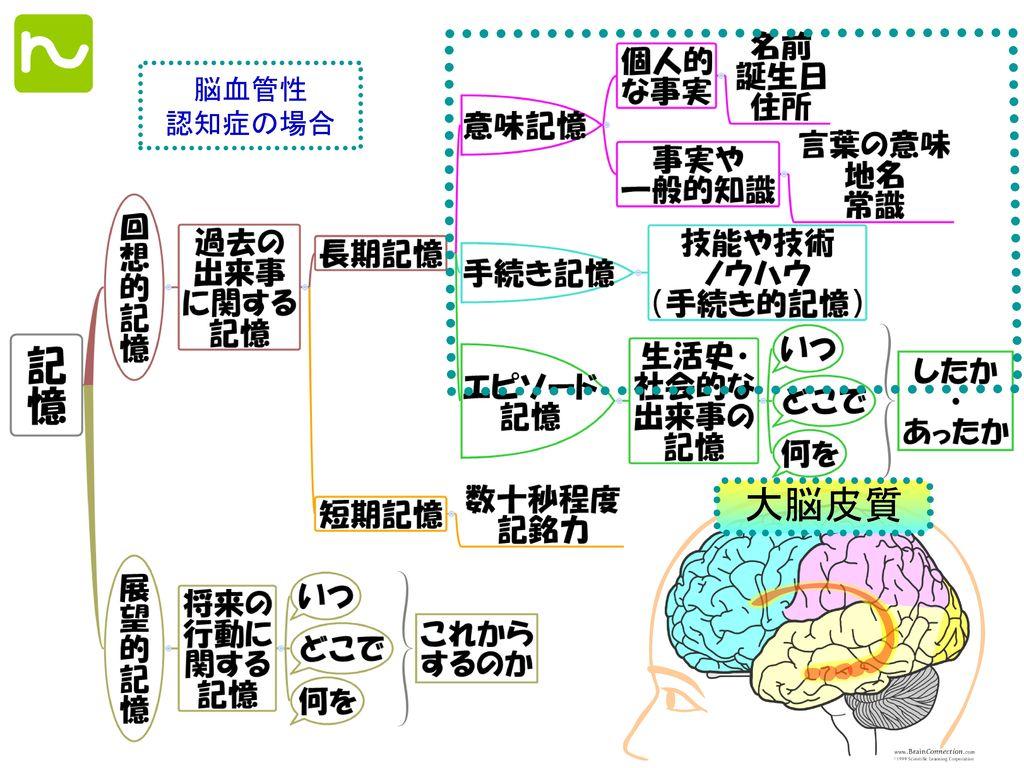大脳皮質 脳血管性 認知症の場合