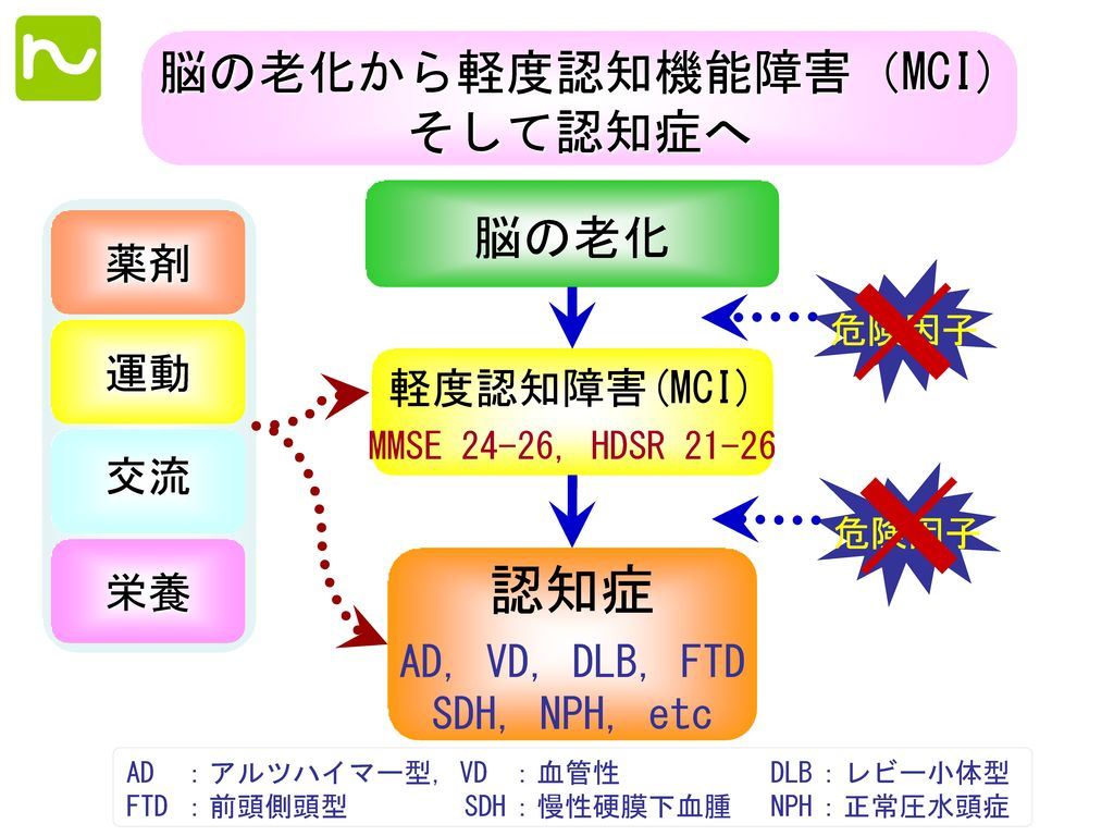 認知症 脳の老化から軽度認知機能障害(MCI) そして認知症へ 脳の老化 薬剤 運動 軽度認知障害(MCI) 交流 栄養