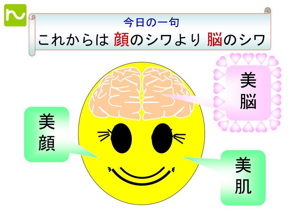 今日の一句 これからは 顔のシワより 脳のシワ 美 脳 美 顔 美 肌