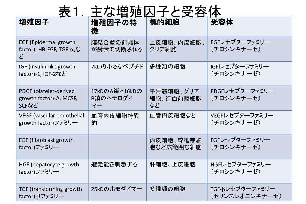 表1.主な増殖因子と受容体 増殖因子 増殖因子の特徴 標的細胞 受容体