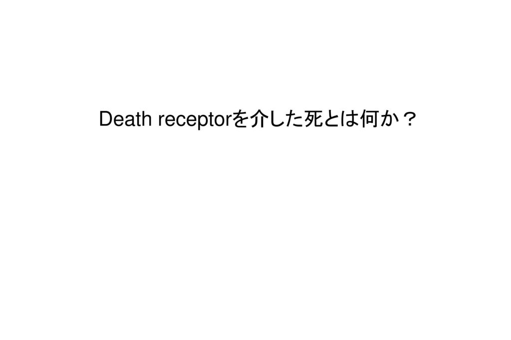 Death receptorを介した死とは何か?