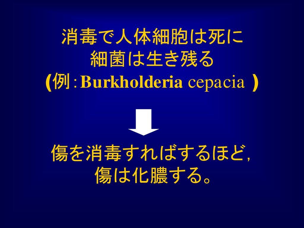 消毒で人体細胞は死に 細菌は生き残る (例:Burkholderia cepacia )