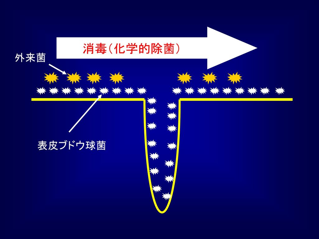 消毒(化学的除菌) 外来菌 表皮ブドウ球菌