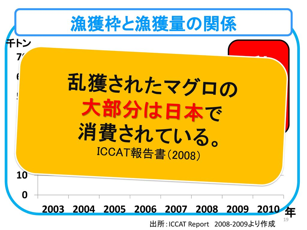 乱獲されたマグロの 大部分は日本で 消費されている。 ICCAT報告書(2008)