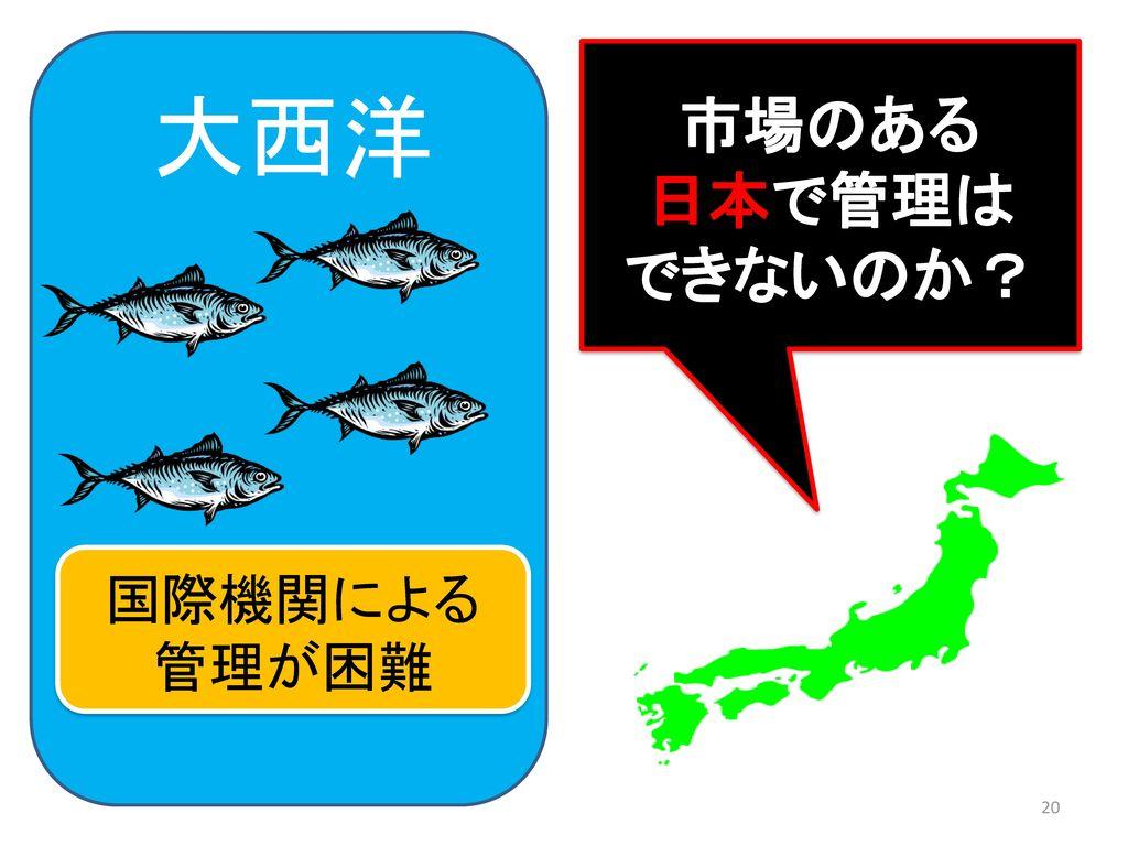 市場のある 日本で管理は できないのか? 大西洋 国際機関による 管理が困難