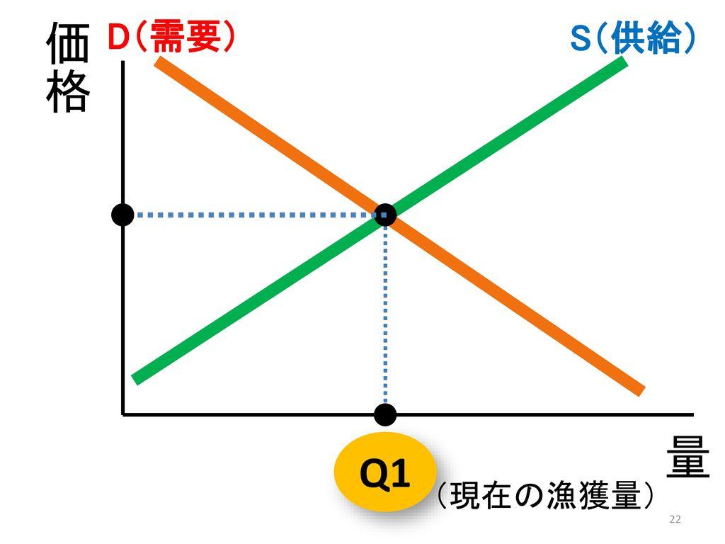 D(需要) S(供給) 価格 量 Q1 (現在の漁獲量)