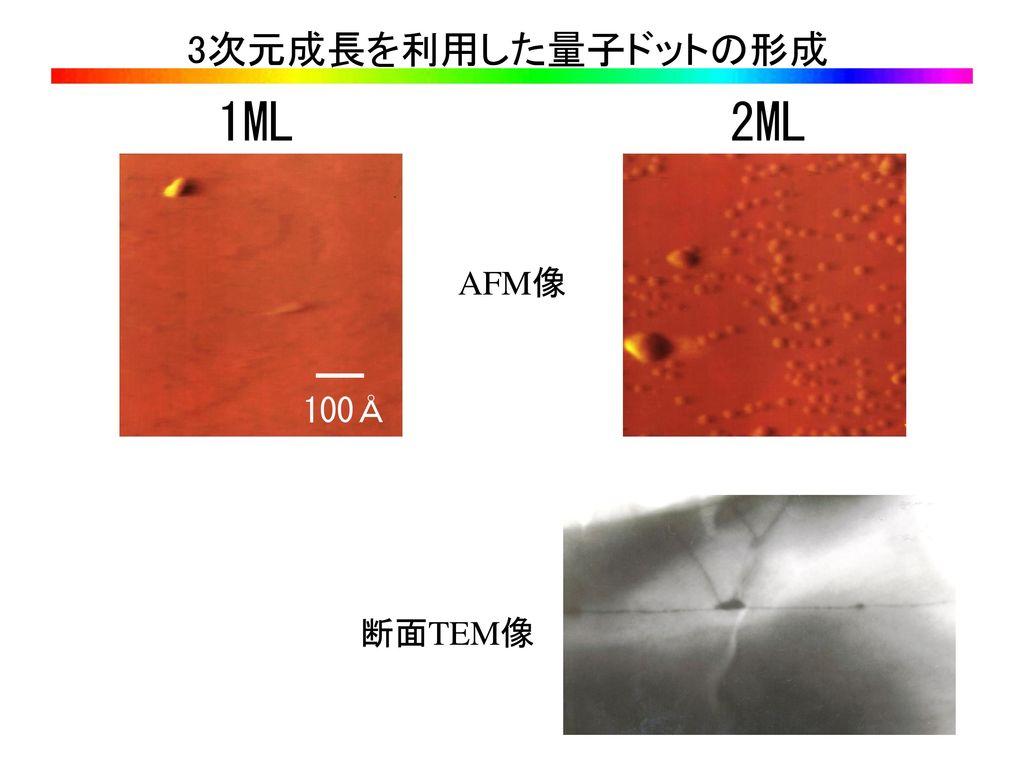 3次元成長を利用した量子ドットの形成 1ML 2ML AFM像 100Å 断面TEM像