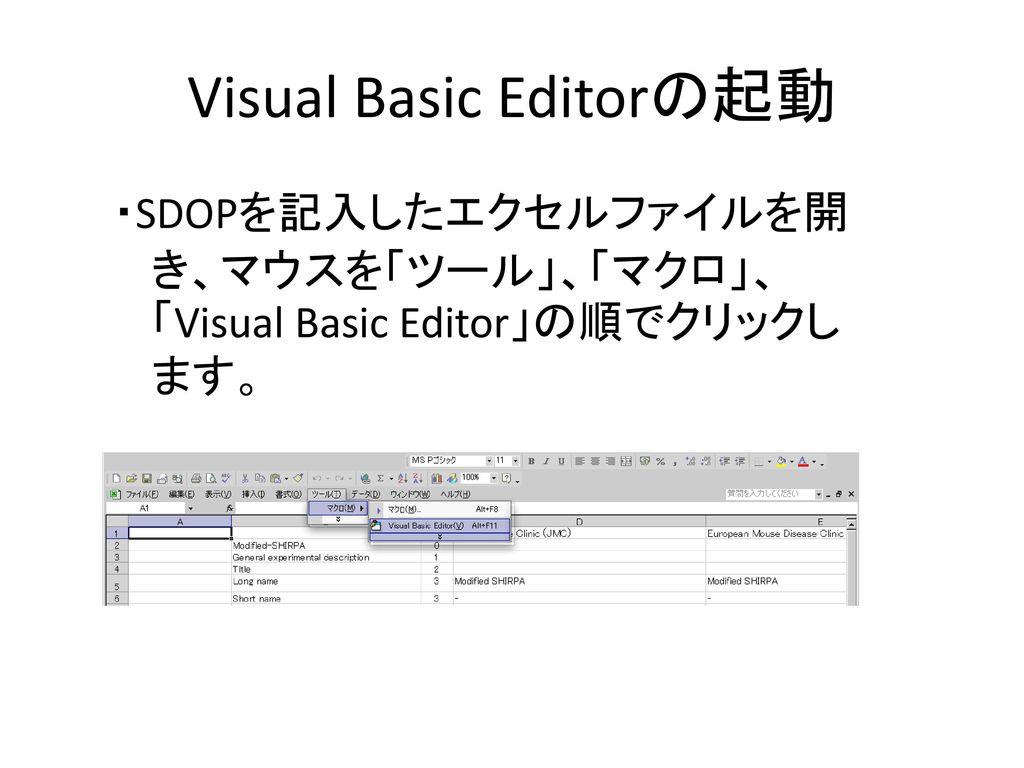 Visual Basic Editorの起動