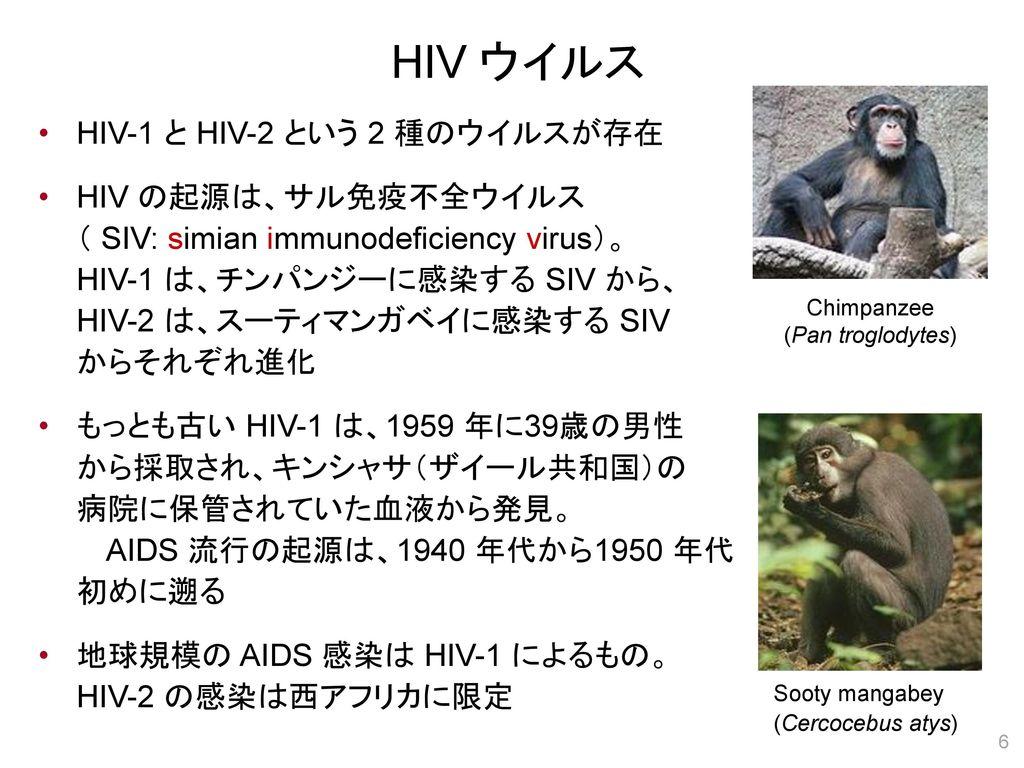 HIV ウイルス HIV-1 と HIV-2 という 2 種のウイルスが存在