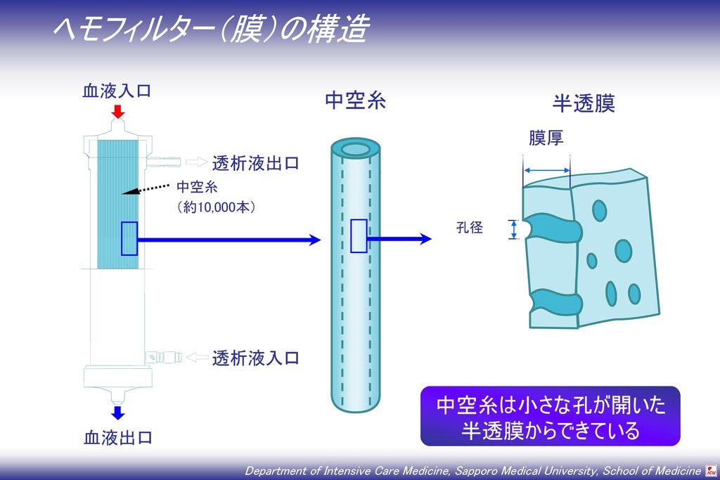 中空糸は小さな孔が開いた 半透膜からできている