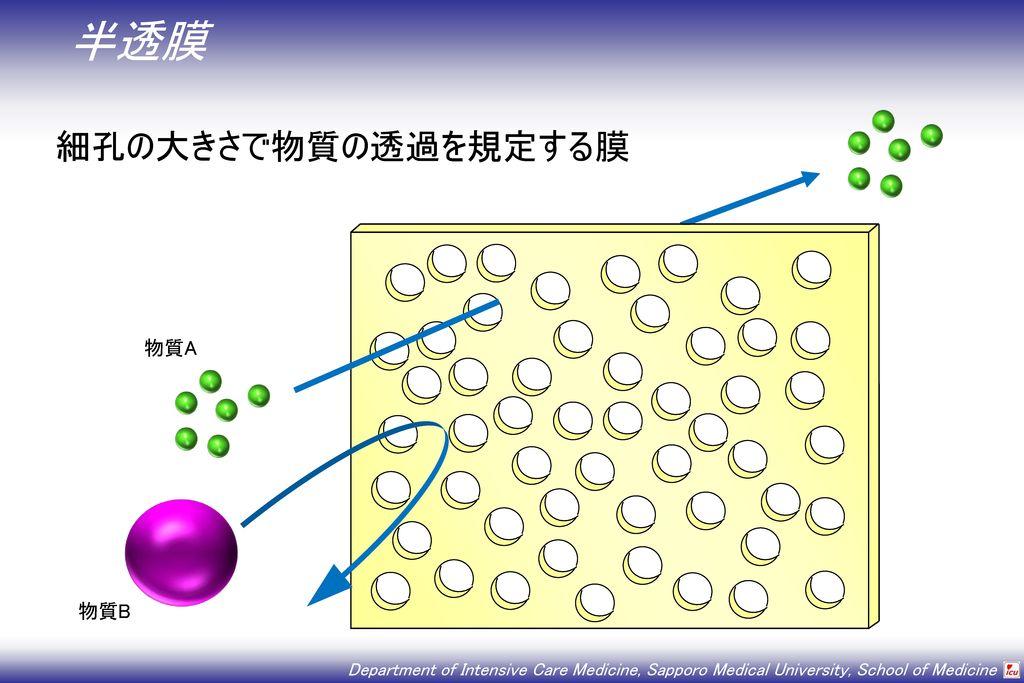 半透膜 細孔の大きさで物質の透過を規定する膜 物質A 物質B