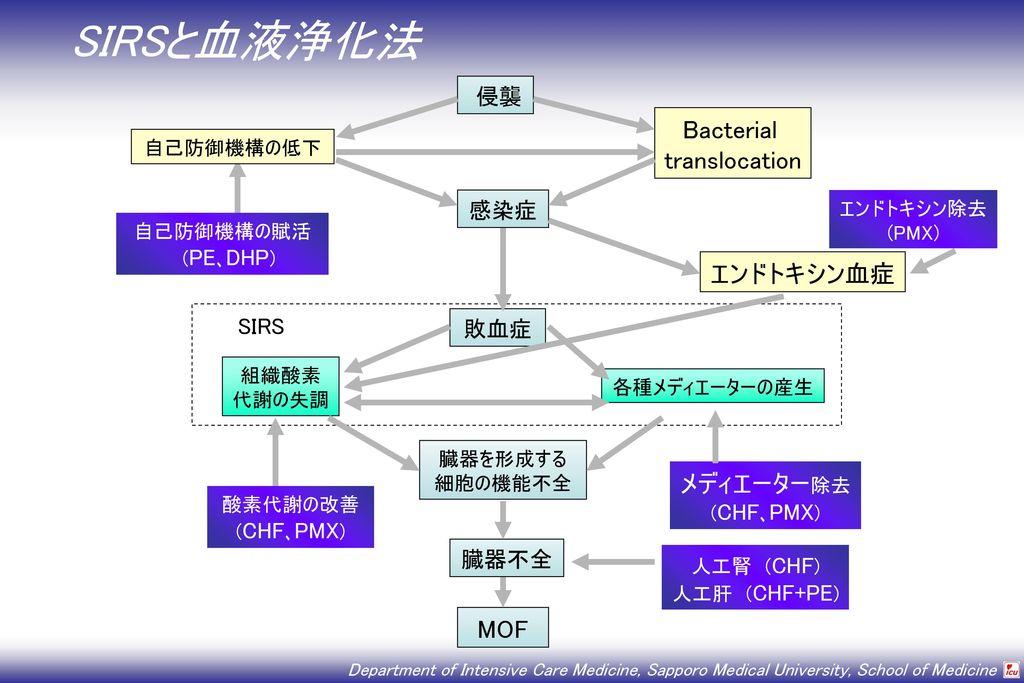 SIRSと血液浄化法 Bacterial translocation エンドトキシン血症 メディエーター除去 MOF 侵襲 感染症 SIRS