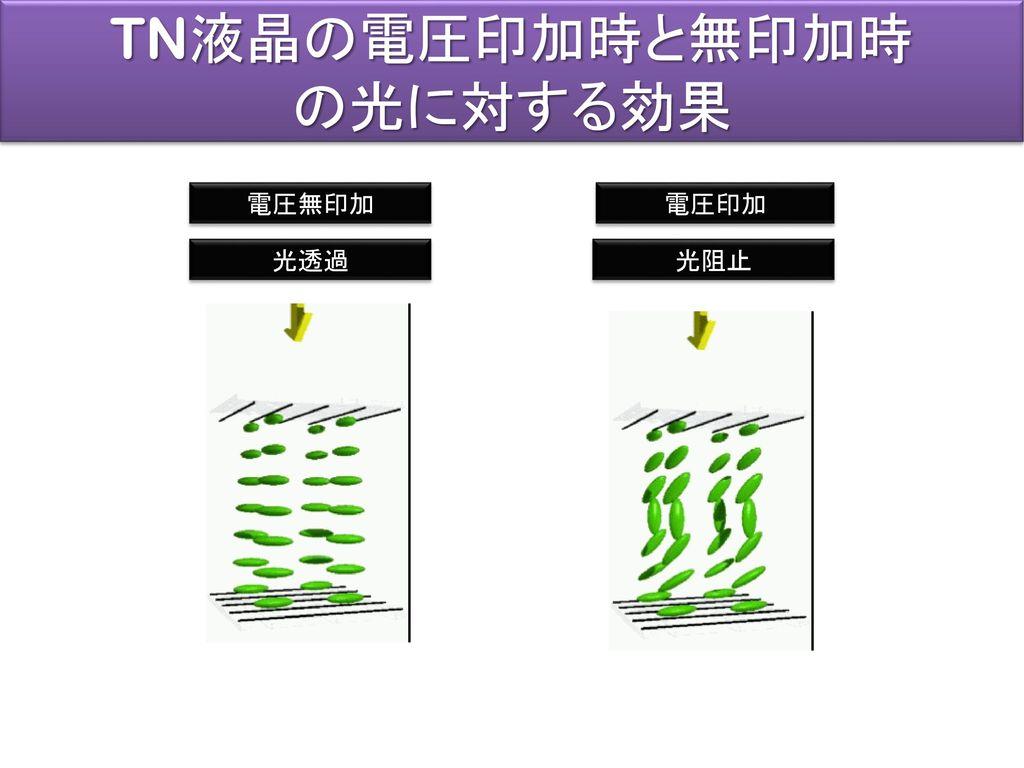 TN液晶の電圧印加時と無印加時 の光に対する効果 電圧無印加 電圧印加 光透過 光阻止