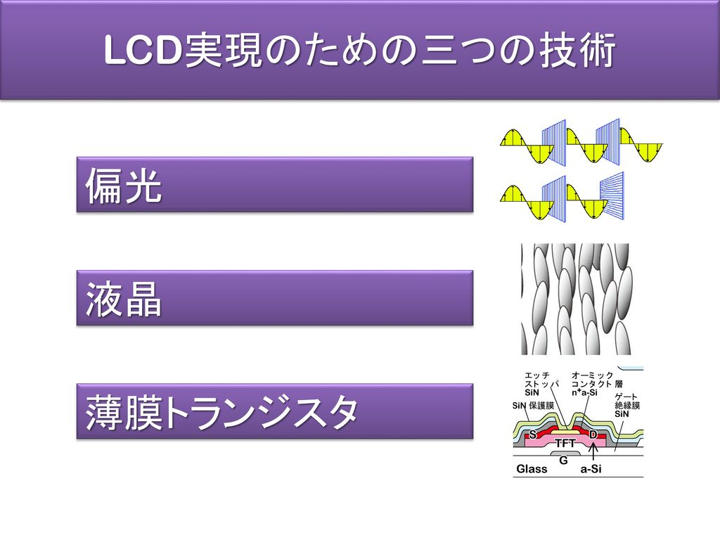LCD実現のための三つの技術 偏光 液晶 薄膜トランジスタ