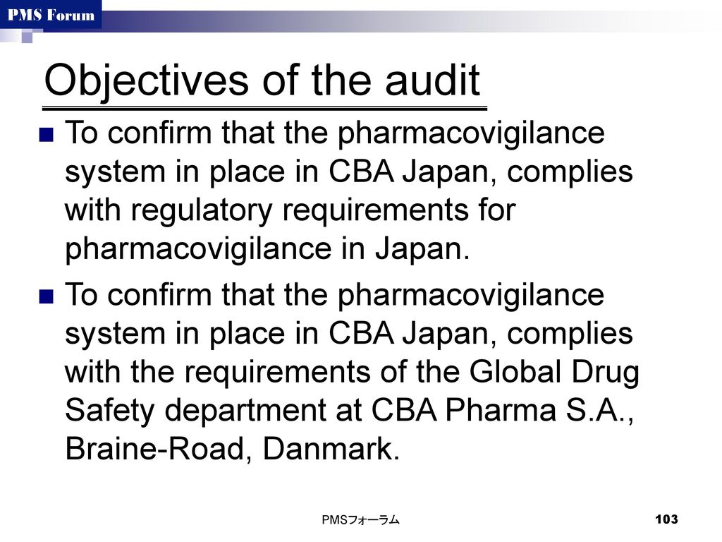 Objectives of the audit
