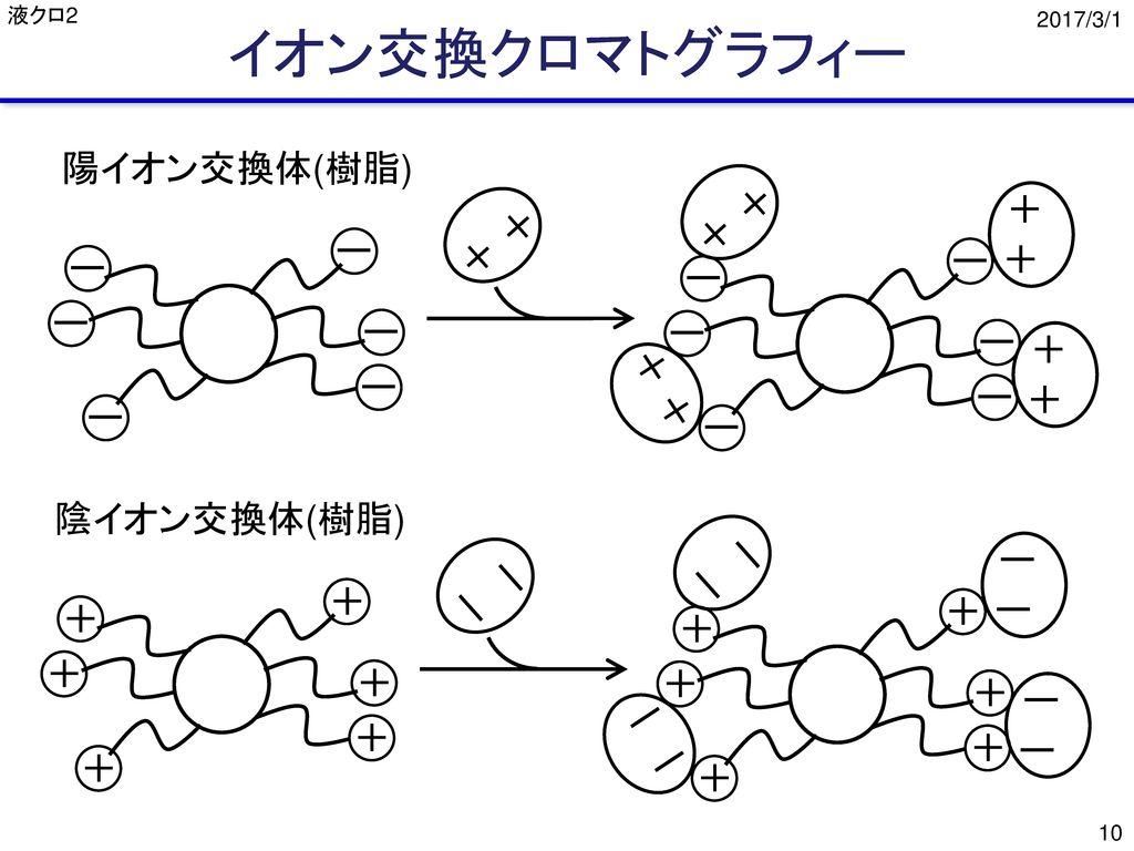 イオン交換クロマトグラフィー 陽イオン交換体(樹脂) + + ー + ー ー ー ー ー ー ー + ー ー + ー ー