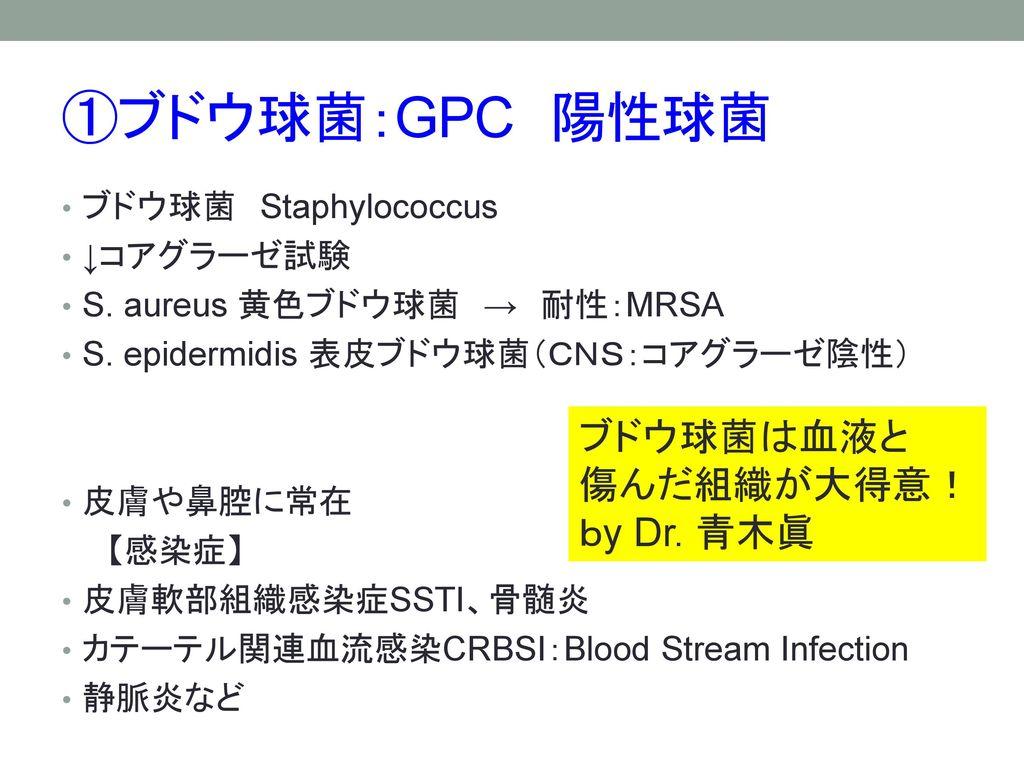 ①ブドウ球菌:GPC 陽性球菌 ブドウ球菌は血液と 傷んだ組織が大得意! by Dr. 青木眞 ブドウ球菌 Staphylococcus