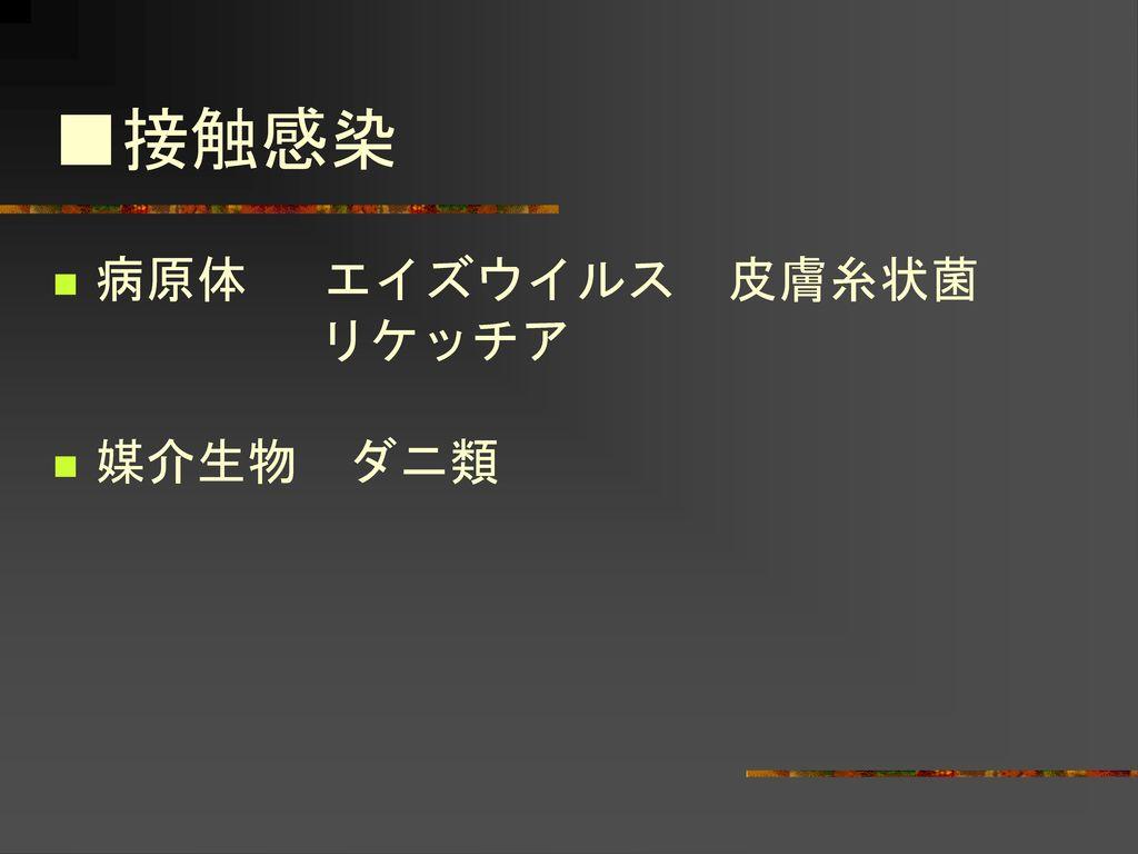 主な感染症とその感染経路 長岡営業所 小林雅樹・倉井智.
