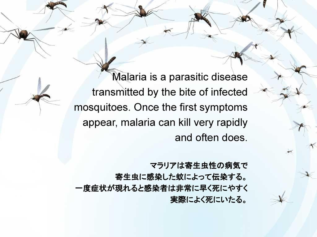 diseases transmitted by mosquitoes pdf