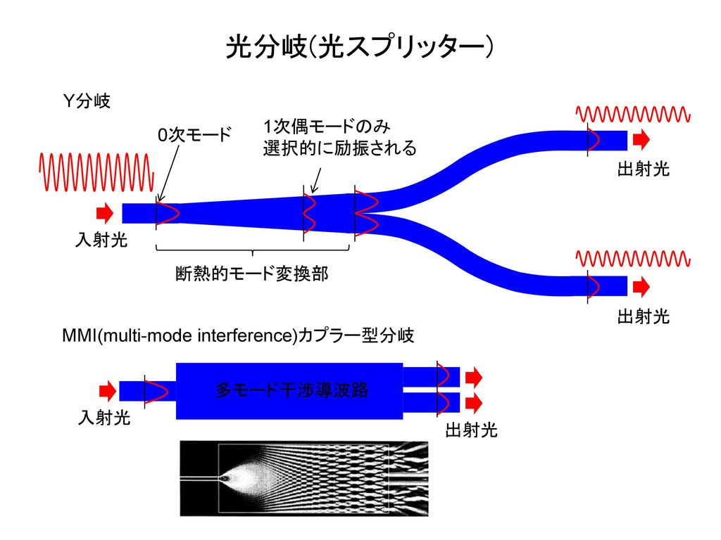 光分岐(光スプリッター) Y分岐 1次偶モードのみ 0次モード 選択的に励振される 出射光 入射光 断熱的モード変換部 出射光
