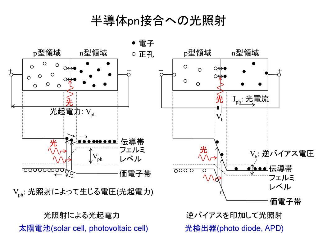 半導体pn接合への光照射 p型領域 n型領域 電子 正孔 伝導帯 価電子帯 フェルミレベル 光 Vph