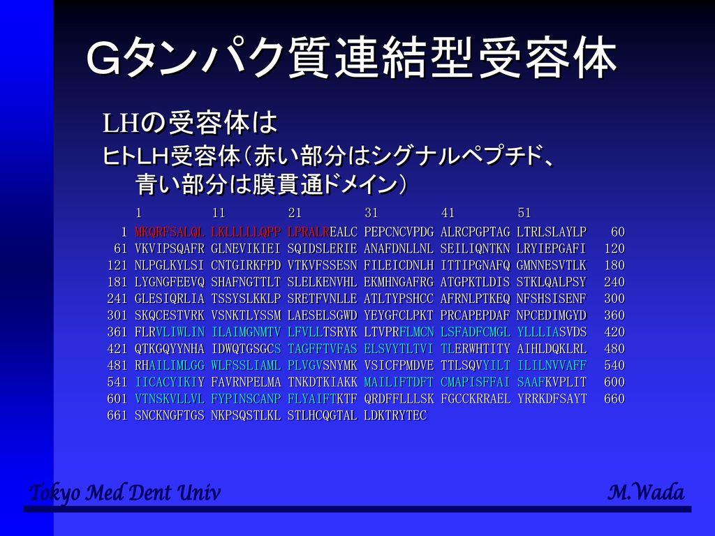 生命科学特論B 第2回 神経による制御機構 和田 勝 東京医科歯科大学教養部.