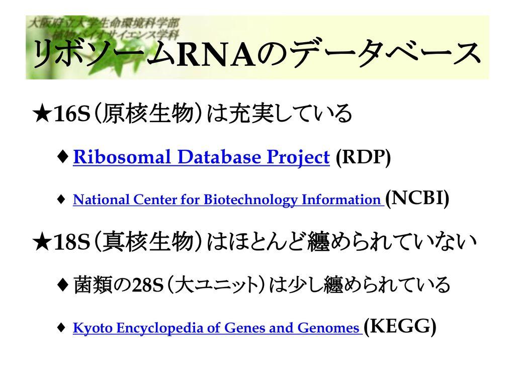 リボソームRNAのデータベース 16S(原核生物)は充実している 18S(真核生物)はほとんど纏められていない