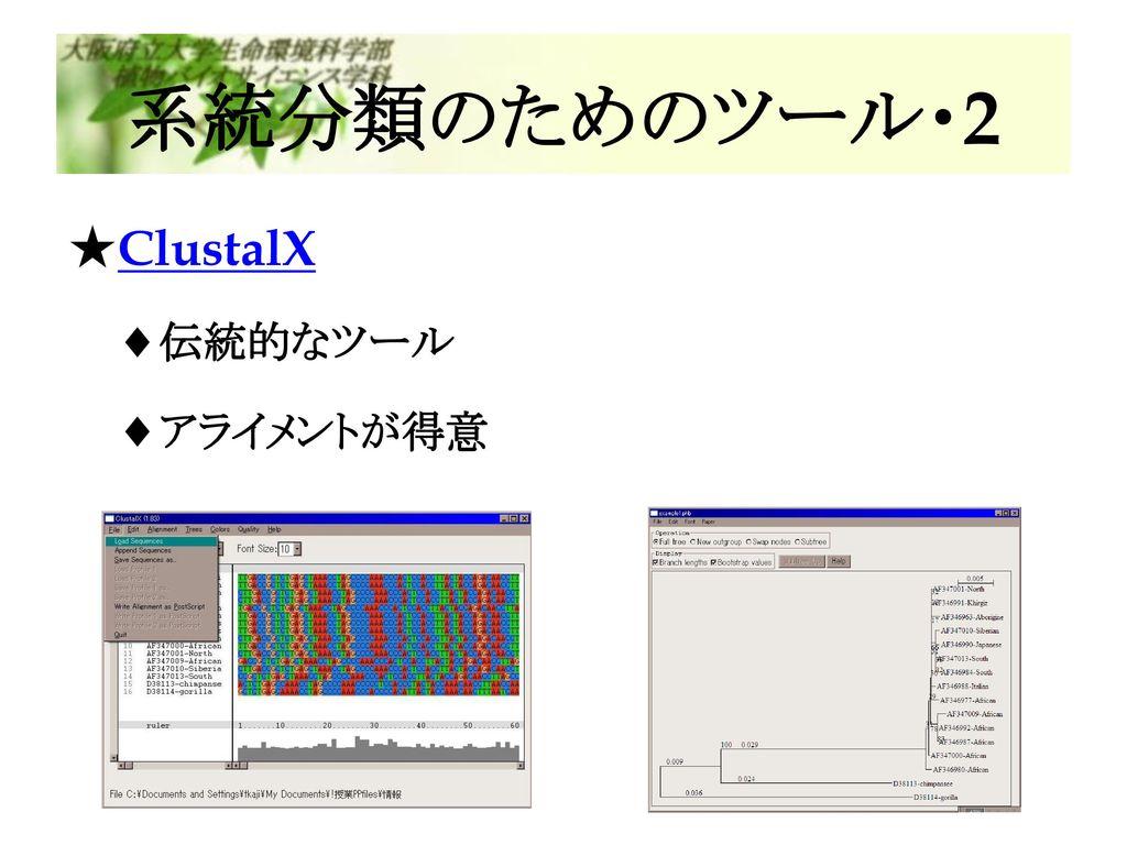 系統分類のためのツール・2 ClustalX 伝統的なツール アライメントが得意