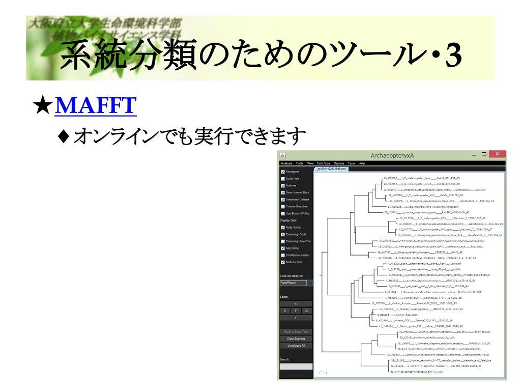 系統分類のためのツール・3 MAFFT オンラインでも実行できます