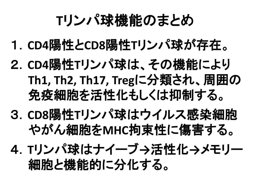 Tリンパ球機能のまとめ 1.CD4陽性とCD8陽性Tリンパ球が存在。