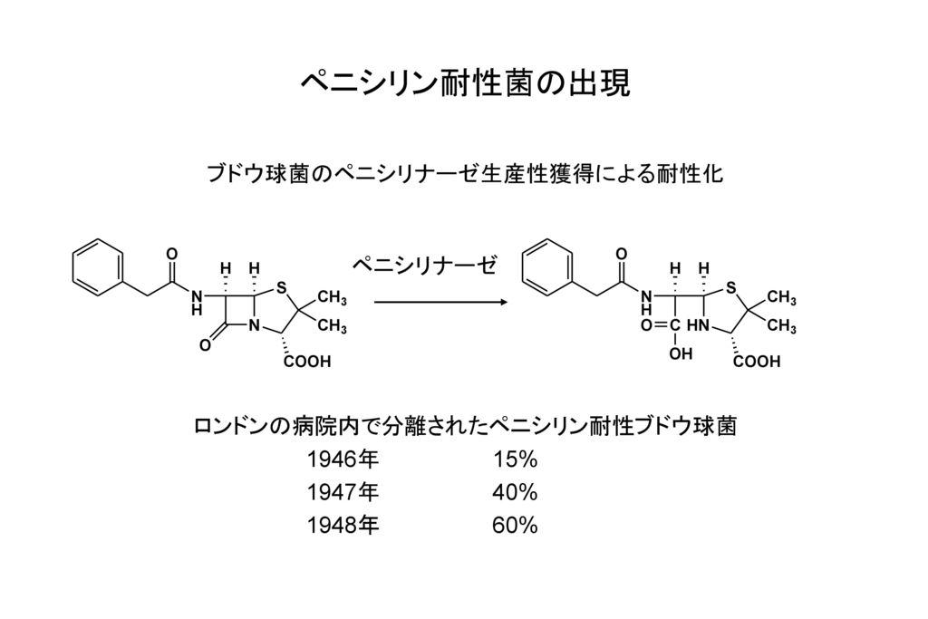 ペニシリン耐性菌の出現 ブドウ球菌のペニシリナーゼ生産性獲得による耐性化 ペニシリナーゼ