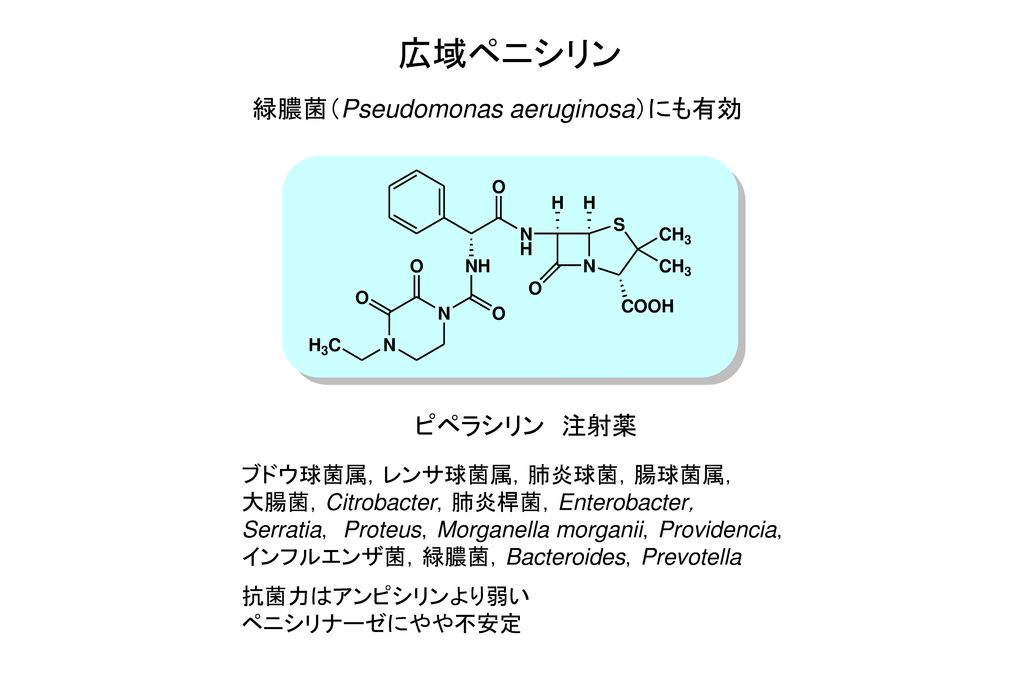 広域ペニシリン 緑膿菌(Pseudomonas aeruginosa)にも有効 ピペラシリン 注射薬