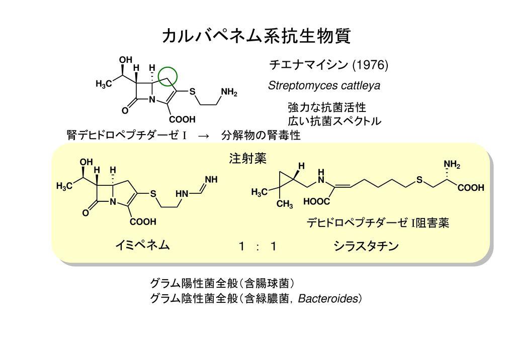 カルバペネム系抗生物質 チエナマイシン (1976) 注射薬 イミペネム 1 : 1 シラスタチン